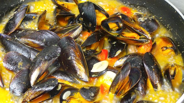 mussels-2265090__340